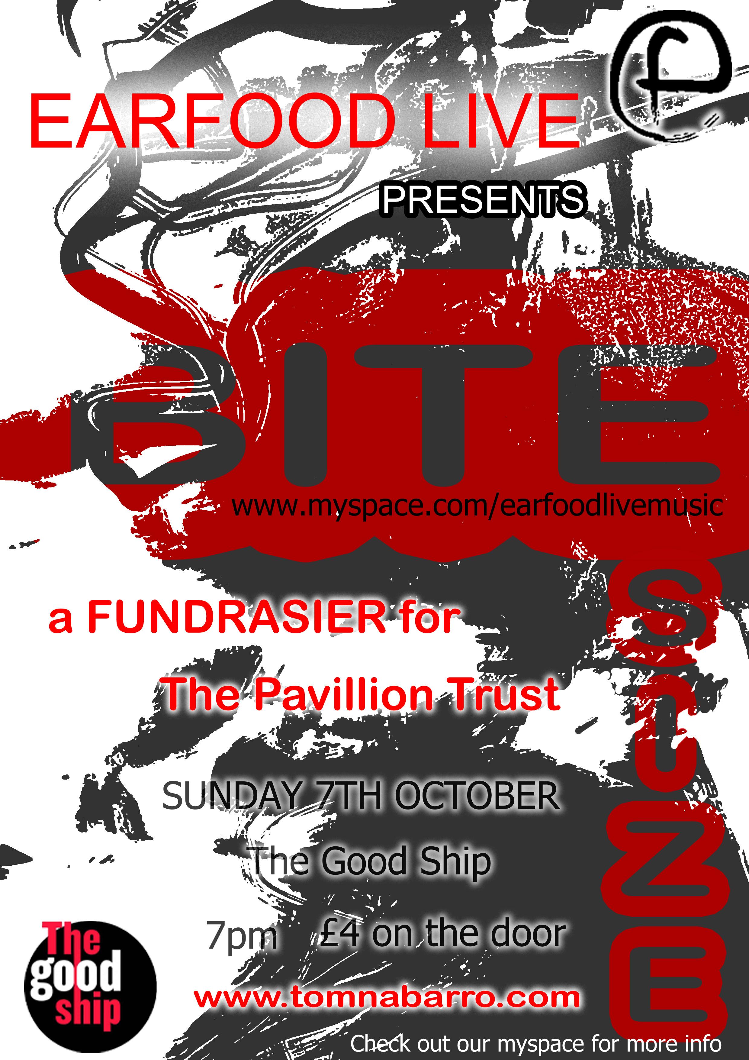 Erin's fundraiser